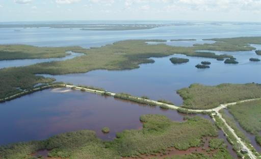Ding Darling Refuge Sanibel Island